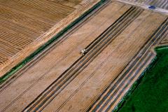 Beverwijk Wijkermeer polder graan oogst 1991 lfh 91082729