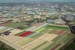 Heemskerk Heemskerkerduin Tuinders gebied Kassen bouw bollen Tuinbouw  1992  lfh 92050449