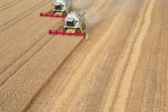 Flevo polder Combines 1997 lfh 9708154-023b